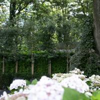 Grote landschapstuin in bosrijk gebied regio Brugge